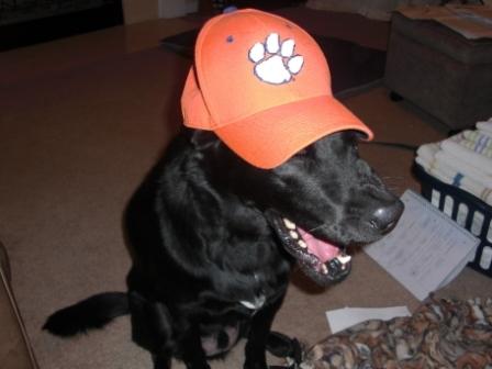 Cole w/ Clemson Hat
